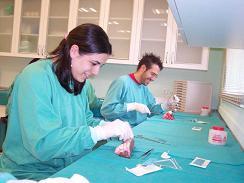 Manual completo de sutura