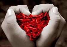 Frases romanticas para enamorar a tu pareja