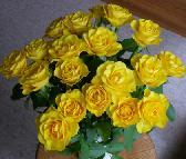 Alarga la vida de tus flores o rosas