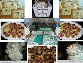 recetas con champiñones